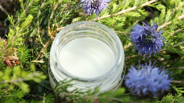 crema en bote de cristal con flores lilas jasione para anunciar actividad de elaborar cremas