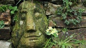 cara de persona sonriendo esculpida en la piedra de un muro con flor prímula saliendo entre las piedras