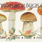 cartel con setas silvestres para anunciar jornadas micológicas