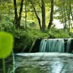 Paisaje de Los oscos para anunciar curso de fotografia en asturias