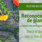 taller de reconocimiento de plantas en santa eulalia de oscos