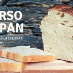 pan de molde cortado en rodajas para anunciar un curso de pan en asturias